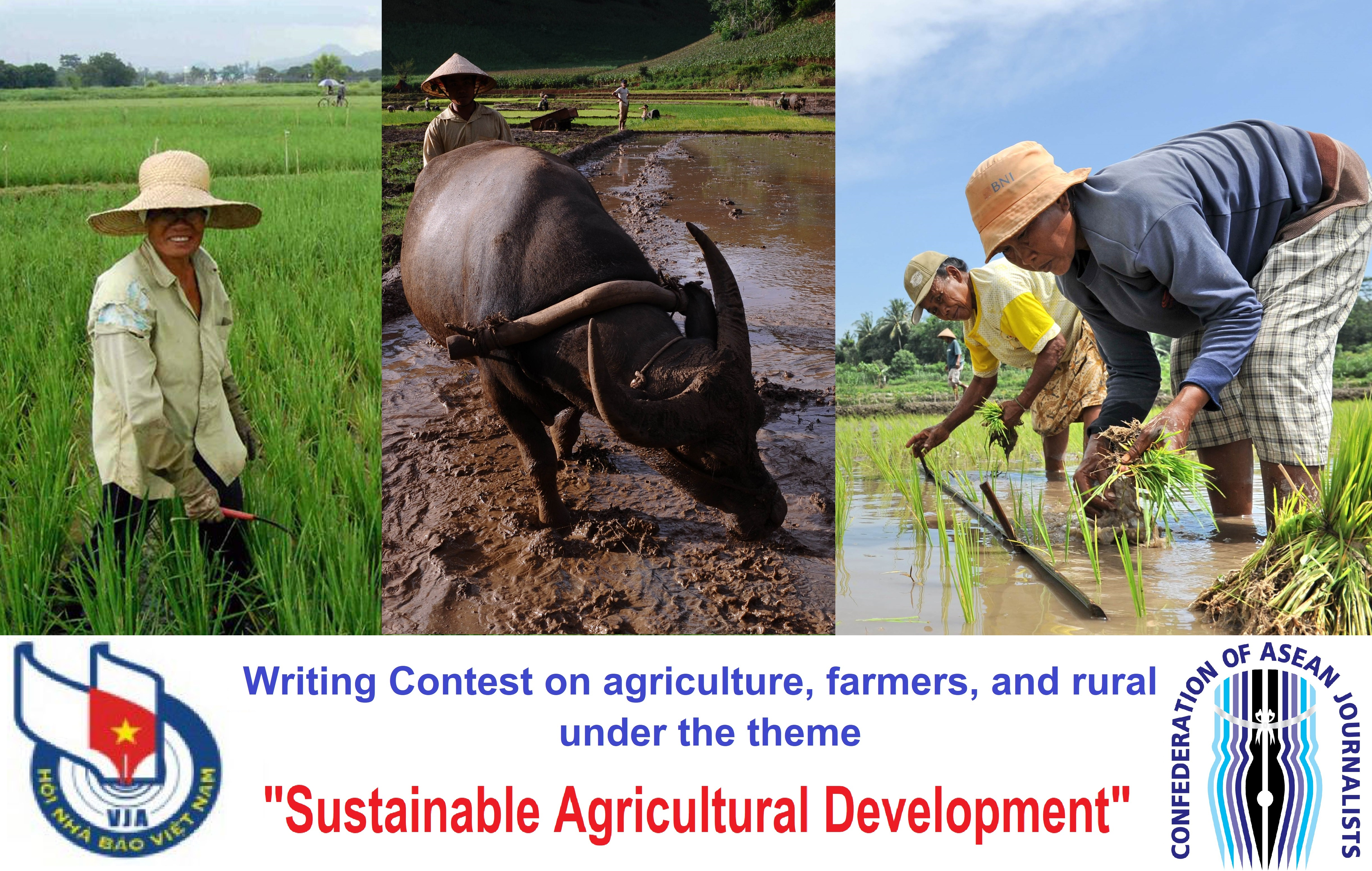 VJA announces Writing Contest on Sustainable Agricultural Development